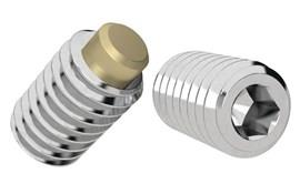 Stainless Steel 316 Set Screw with Brass Tip (WDS 762)