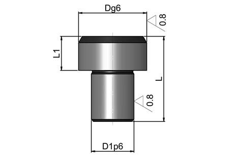Location Pin - Inch Round Head Ground Finish (WDS 504)