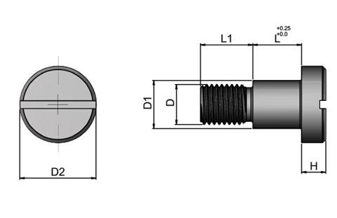 Retaining Screws Suitable For Drill Bushes - Steel - Metric (WDS 615)